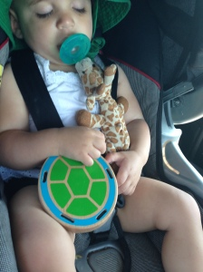 asleep with turtle