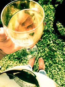 wine apple picking