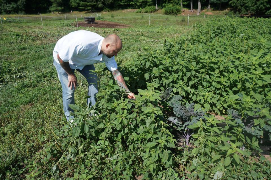 john medonis at sub edge farm